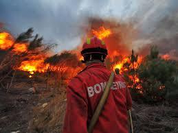 Corpo de Bombeiros do DF trabalha na prevenção de incêndios na capital