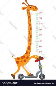 Giraffe Chart Giraffe On Scooter Meter Wall Or Height Chart