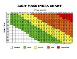 Height To Body Weight Ratio Chart 10 Height Weight Chart For Females In Kgs Payment Format