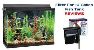 best filter for 10 gallon fish tank