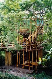 tree house resort. Big Beach In The Sky Treehouse: Fantastic Ocean/beach View. Atop A Towering Tamarind Tree Above Sandune Accessible Only By Suspension Bridge. House Resort