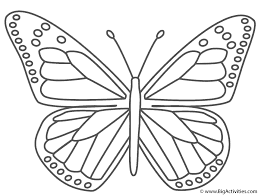 Small Picture Monarch Butterfly Coloring Page Insects