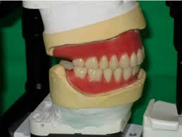teeth setting digital method and content development of the hungarian higher