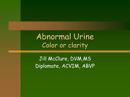 Ppt Abnormal Urine Color Or Clarity Powerpoint