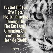Tiger Quotes 100 Stunning Tiger Quotes Gallery WallpapersIn24knet