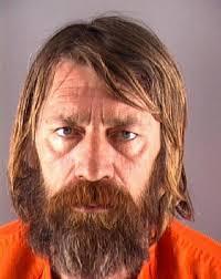 mugshots 13 the sun news brookins joseph delbert ordinance public disorderly conduct generally