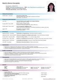 Curriculum Vitae Template En Espanol Professional Resume Objectives