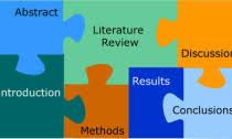 Структура диссертации структурные элементы Обзоры по медицине Структура диссертации