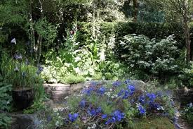 Small Picture Sheena Marsh Author at Oxford Garden Design Page 7 of 7