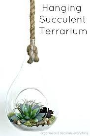hanging terrarium kit hanging terrarium s large hanging terrarium globe hanging terrarium kit diy hanging air