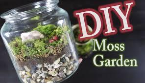 DIY Moss Terrarium: How To Make A Moss Garden - YouTube