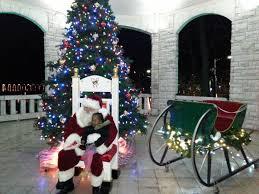 BnDAmato Productions  EPK  Slide ShowThe Living Christmas Tree Knoxville Tn