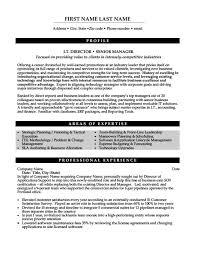 It Director Or Senior Manager Resume Template Premium Resume