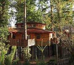 Stay Overnight In The Beautiful Treehouses At The Rock And Treehouse Accommodation Ireland
