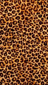 animal print wallpaper for iphone. Contemporary Wallpaper Animal Wallpaper Iphone Phone Backgrounds Fur  Smartphone Hintergrund Backrounds Inside Print Wallpaper For E