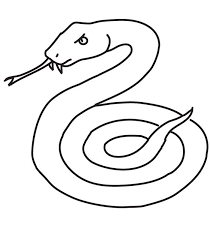 Small Picture Viper Snake Drawing With Color Viper Snake Coloring Page In
