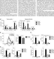 Lps Design Associates Mechanism Of Suppression Of Asthma By Chronic Low Dose Lps