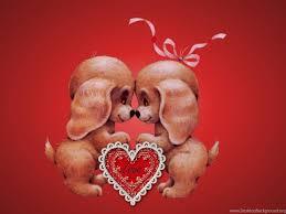 cute animal valentines day wallpaper. Interesting Valentines Cute Animal Valentines Day Wallpapers U2013 Valentine Week 2016 Desktop  Background With Wallpaper L
