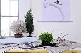 desk garden. Contemporary Garden DIY A Desktop Zen Garden And Desk F