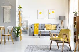 yellow armchair on rug near plant in open space interior with posters above grey couch