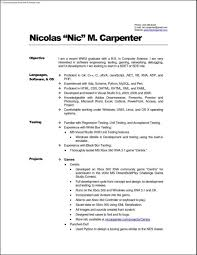 Gallery Of Carpenter Resume Example