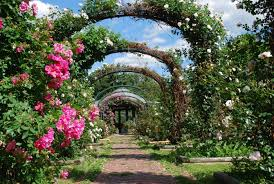 Small Picture 11 Beautiful New York Gardens You Must See