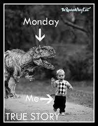 Funny Monday Morning Quotes Beauteous Funny Monday Morning Quotes The Random Vibez