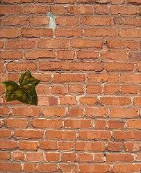 the last leaf last leaf by the author o henry atticus ezis composite of leaf on brick