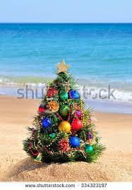 Hawaii Christmas In July Lahaina Banyan Alight  Hawaii PicturesChristmas Tree Hawaii