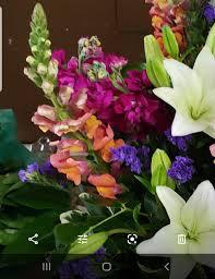 Designers Overstock Ozark Mo Hazels Exclusive Designers Choice In Ozark Mo Hazels Flowers