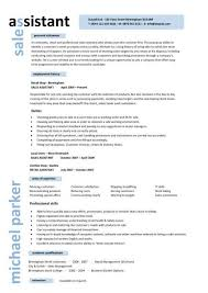 Retail Resume Template Interesting Sample Cv For Retail Sample Cv For Retail