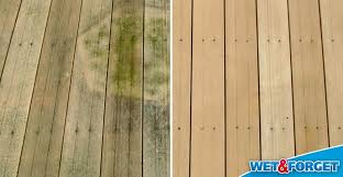 defeat mold and mildew indoors and outdoors with wet forget