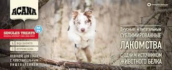 <b>Лакомства для собак</b> Acana (Акана) – все виды, состав, отзывы