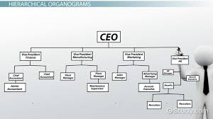 Organizational Chart For Coffee Shop What Is An Organogram Definition Structure Example