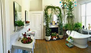 ... Bathroom:Amazing Good Bathroom Plants Design Ideas Modern Best On  Interior Decorating Best Good Bathroom ...