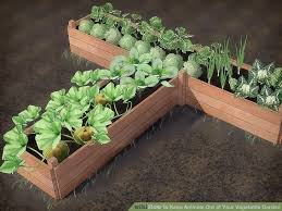 how to keep animals out of garden. image titled keep animals out of your vegetable garden step 2 how to o
