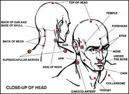 Knockout Pressure Point Chart Diagram Of The Most