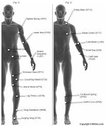 64 Punctual Human Body Pressure Points