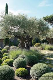 Small Picture 100 best Garden Inspirations Jardins images on Pinterest