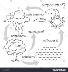 Flow Chart On Water Cycle Water Cycle Diagram Psd Wiring Diagram
