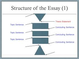 paper essay what is the thesis in an essay a healthy mind in  the structure of the essay explanation of paragraphs structure of the essay thesis statement introductory hook