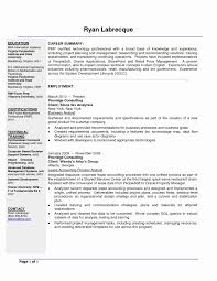 Sample Resumes For Business Analyst Business Analyst Roles And Responsibilities Resume Template