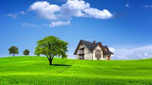 cool nature wallpapers hd 3d. Simple Cool Home 3D Nature Wallpaper HD 2560x1440 To Cool Wallpapers Hd 3d A