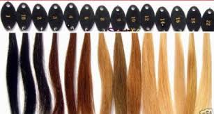 Lace Wig Hair Color Chart Color Chart Deevine Lace Wigs