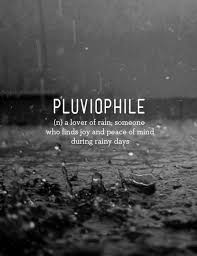 Beautiful Rain Quotes Best of Rain Quotes THELOVE24HAPPINESS