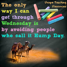 The 100 Best Funny Hump Day Quotes For Work Paulcong