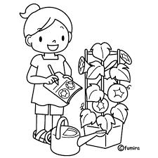 アサガオ観察日記ぬりえ 子供と動物のイラスト屋さん わたなべふみ