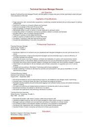 Project Manager Resume Sample Doc Delectable Technical Manager Resume Technical Manager Resume Resume Template