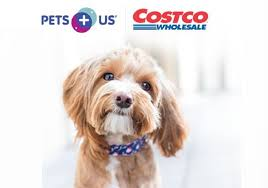 Costco auto insurance review cheap option for members but weak. Costco Pet Insurance Review