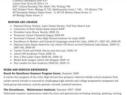 Example College Application Resume Examples Of Resumes High School